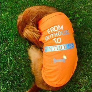 Weenie Wear custom small dog shirt.